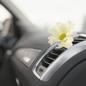 eliminacion_olores_coches
